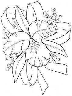 Coloring Book~Daisy's Coloring Book - Bonnie Jones - Álbumes web de Picasa