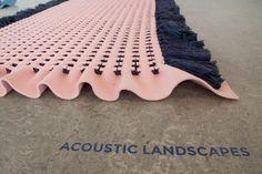 robin-pleun-acoustic-landscape-2                                                                                                                                                                                 More
