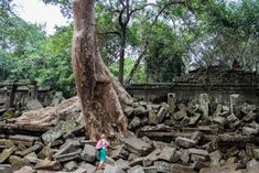 If you're interested in exploring historical sites in your vacation, you should visit all the Cambodia temples. Temple Ruins, Hindu Temple, Koh Ker, Asia Continent, Old Images, Ancient Ruins, Angkor Wat, Heritage Site, Holiday Destinations