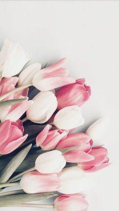 Ideas For Flowers Tulips Wallpaper - Vintage - Blumen