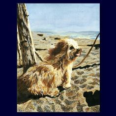 This is my watercolor painting of Zipper the Dog at Stinson Beach, California.