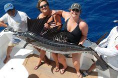 Fishing in cancun-sailfishing cancun #fishingcancun #sportfishingcancun