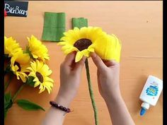 Special way to make sunflower from crepe paper - SO EASY - Let's make it for sum. Besondere Art, Sonnenblumen aus Krepppapier herzustellen - SO EINFACH Paper Sunflowers, Paper Flowers Craft, Paper Flowers Wedding, Giant Paper Flowers, Flower Crafts, Diy Flowers, Flowers From Tissue Paper, Crepe Paper Crafts, Crepe Paper Roses