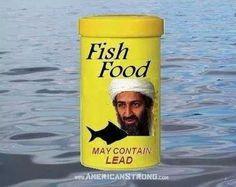 .fish food