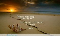 """""""You are not a drop in the ocean. You are the entire ocean, in a drop."""" – Rumi, 13th-century persian muslim poet, theologian, and sufi mystic."""