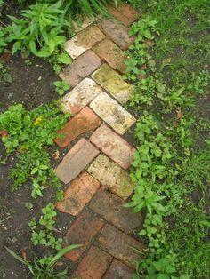 Recycled Brick, Recycled Garden, Diy Garden, Garden Cottage, Garden Edging, Garden Paths, Garden Projects, Herb Garden, Path Edging
