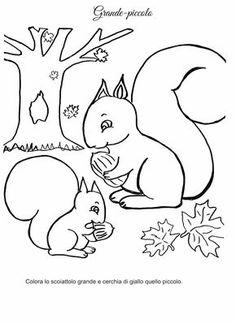 kinder-malvorlagen-tiere-eichhoernchen-eiche