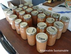 Homemade applesauce is just one of the simple recipes for first-time canners.. Pressure cooker or water canning both questions answered here.