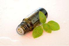 Diminuer les ballonnements grâce à l'aromathérapie
