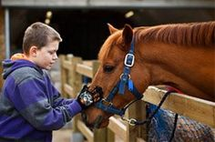The Ebony Horse Club is a community riding centre in Brixton, using horse riding to improve the life skills & aspirations of local children.