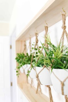 Easy to make wall decor Plant Wall Decor, House Plants Decor, Diy Wall Planter, Indoor Plant Wall, Indoor Plant Hangers, Indoor Garden, Hanging Plants, Wall Of Plants, Plant Holders