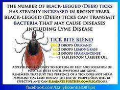 Image result for doterra essential oils for tick bites