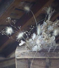 Shade Garden Flowers And Decor Ideas Dried Florals Winter Wedding Flowers, Floral Wedding, Winter Weddings, Wedding Sets, Real Weddings, Ikebana Arrangements, Floral Arrangements, Cut Flowers, Dried Flowers