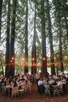 1000 images about enchanted forest on pinterest trees receptions - 1000 Ideas About Forest Wedding On Pinterest Enchanted