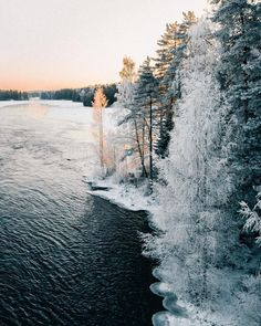 Majestic Landscapes of Finnish Lapland by Anna-Elina Lahti photography nature landscape Finland travel outdoor adventure winter 506443920597518267 Photography Tags, Amazing Photography, Landscape Photography, Nature Photography, Winter Travel, Holiday Travel, Winter Wonderland Pictures, Places To Travel, Places To Go