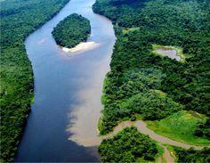 pantanal | Maravilhas do Brasil: Devastação do Pantanal Mato Grossense é maior ...
