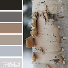 Color Palette: Shades of Browns and Grays. If you like our color inspiration, sign up for our monthly trend letter here! http://patternpod.us4.list-manage.com/subscribe?u=524b0f0b9b67105d05d0db16a&id=f8d394f1bb&utm_content=buffer847d9&utm_medium=social&utm_source=pinterest.com&utm_campaign=buffer