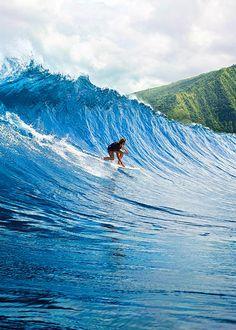 Sofia aloha tube