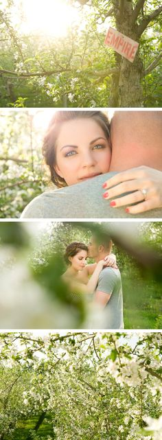 Engagement photo shoot in an apple orchard   From Elegant wedding