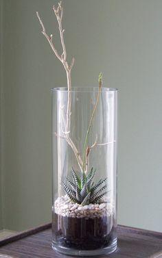 Tall vase terrarium