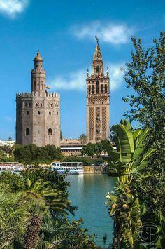 La Giralda & La Torre del Oro in Seville - Andalusia, Spain Portugal Travel, Spain And Portugal, Spain Travel, Alhambra Spain, Places To Travel, Places To Visit, Seville Spain, Andalusia Spain, Madrid