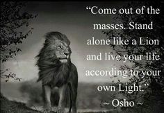 """""""Come out of the masses. Stand alone like a Lion and live your life according to your own Light."""" ~ Osho"""