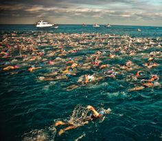 """...""""Swimming in general may be all about technique, but open-water swimming is about surviving.""""...->Exactly!!!!!"""