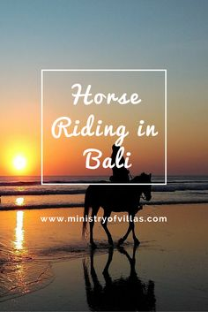 An unforgettable experience is available in Bali: the thrill of riding a beautiful horse through the rice fields heading down to the beach is something you will never forget. Either romance for a couple, or an adventure for the whole family, it is worth a try. #bali #beach