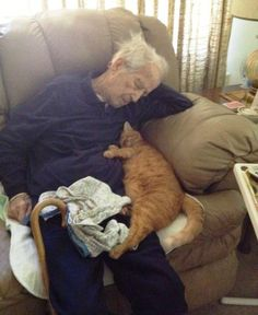 """from R the poster there says: """"My 100 year old Grandpa and his 17 year old Cats cats Crazy Cat Lady, Crazy Cats, I Love Cats, Cute Cats, Funny Cats, Humorous Cats, Funny Jokes, Animals And Pets, Funny Animals"""