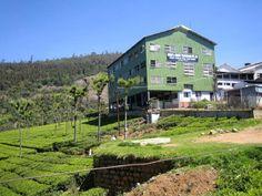 Tea Factory. Nilgiri Hills, India.