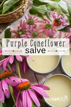 Herbal Magic, Herbal Cure, Herbal Remedies, Homemade Beauty Recipes, Homemade Skin Care, Be Natural, Natural Healing, Natural Life, Salve Recipes