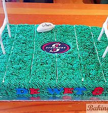 Stormers Rugby Cake Baking Visions