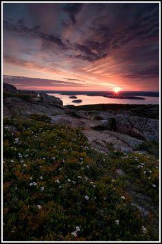 Sunrise - Cadillac Mountain Maine