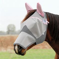 Crusader Breast Cancer Benefit Fly Mask - Gracie has outgrown hers... needa get a bigger one! :D