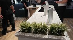 Interior design trend emerging in North America. Our favourite affordable interior design trend from Interior Design Show in Toronto: countertop planters. Interior Design Shows, Interior Decorating, Self Watering Planter, Other Space, Plant Wall, Live Plants, Indoor Plants, Offices, Design Trends