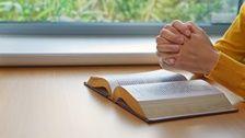 Zbłąkane serce powraca do domu #Bóg #Jezus #JezusChrystus #PanJezus #PismoŚwięte #Zbawiciel  #ModlitwadoBoga #Krzyż #Chrześcijaństwo  #Religijne #Ewangelia #Bógdociebieprzemówił #DzisiejszaEwangelia #słyszećgłosBoga #Zbawienie #SłowoBożenadziś #Wcielenie #KościółBogaWszechmogącego #BógWszechmogący #Błyskawicazewschodu Plastic Cutting Board, Bible, Biblia, The Bible