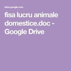 fisa lucru animale domestice.doc - Google Drive Google Drive