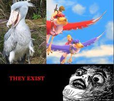 Skyward Sword Birds