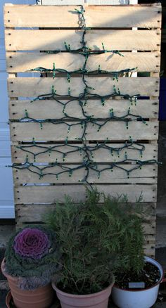 Pallet Christmas Tree and Display and My Little Red Ladder - Cupcakes & Crinoline | Cupcakes & Crinoline