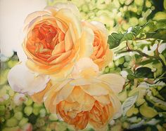 Life in Full Color - Watercolors by Cara Brown - Blossoming Hope