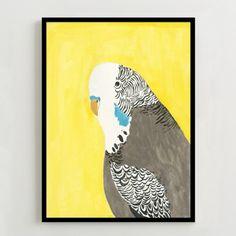 Framed Print - Parrot Portrait