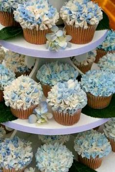 Gorgeous hydrangea cupcakes