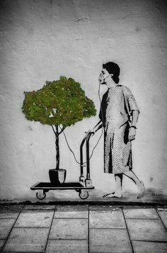 #Deforestation #Pollution