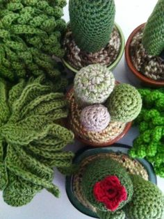 Crochet plants by Little Bird Available only at Cultiver: Indie Arts and Design www.cultivershop.blogspot.com