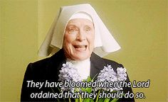This made me cry. Beautiful (21) sister monica joan | Tumblr