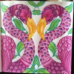 Have been playing with this on and off for weeks :) has been my escape from drawing colouring pages! #tropicalwonderland #milliemarotta #inktense #pencils #watercolour #colouring #coloring #colouringbook #adultcolouring #AdultColoringBooks