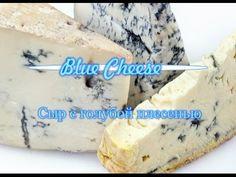 Мастер-класс: Домашний сыр с голубой плесенью