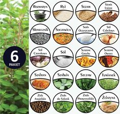 Kitchen Labels, Mini Foods, Digital Stamps, Banner, Pictures, Ideas, Craft, Tags, Miniatures