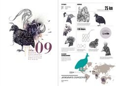 Behind the unknown – infographic calendar on Behance