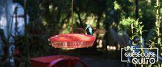 Observation d'oiseaux à San Jorge Eco Lodges | Une québécoise à Quito